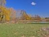 DSC_3246